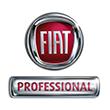 Fiat professionnel
